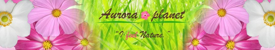 Aurora planet